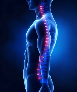 Posture-spineandhealth-crowsnest-northsydney