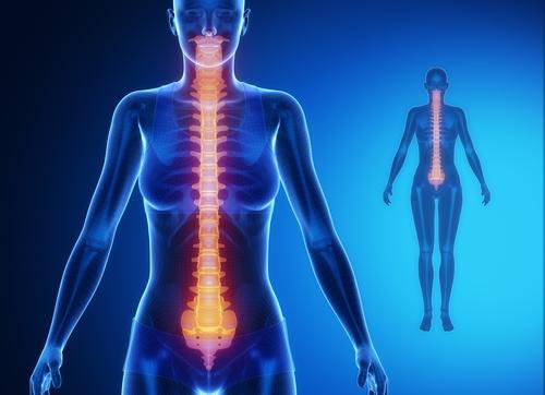 lumbardisc-back-chiropractor-posture-spineandhealth